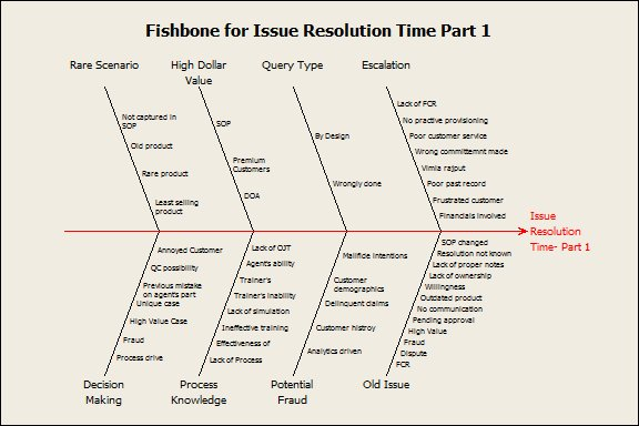 Fishbone on Issue Resolution Time