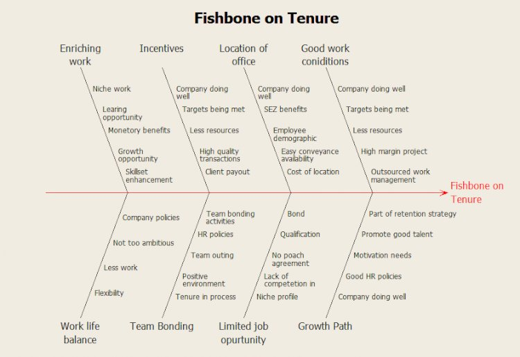 Fishbone on Tenure