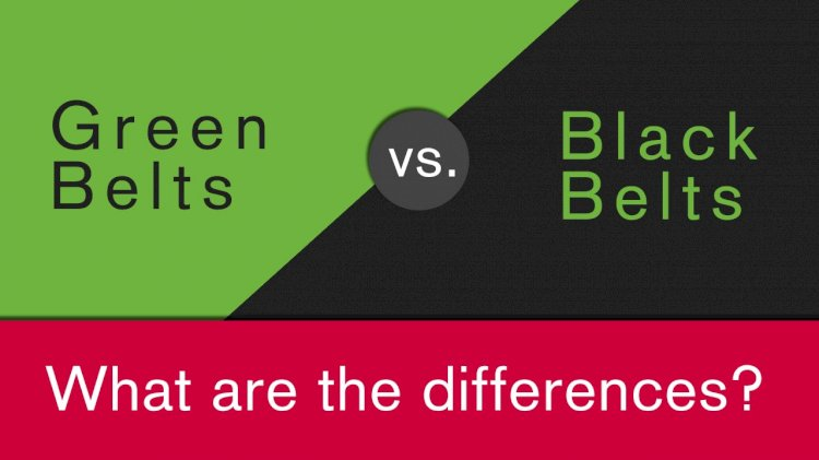 Difference between Green Belt and Black Belt Projects