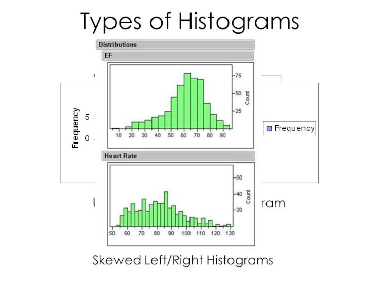 Data Representation with Various Types of Histograms