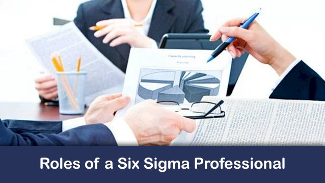 Skype Session 1- Roles of a Six Sigma Professional
