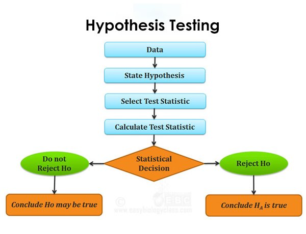 Hypothesis Testing When Y & X are Both Continuous